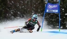 Audi FIS World Cup - Women's Giant Slalom Royalty Free Stock Photos