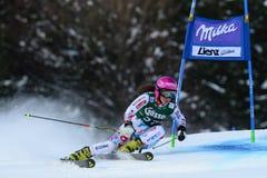 Audi FIS World Cup - Women's Giant Slalom Stock Image