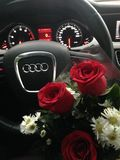 Audi and roses Stock Photography