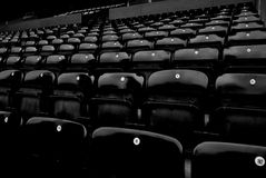 Audience chairs. Good picture for audience in stadium or funeral Royalty Free Stock Photography