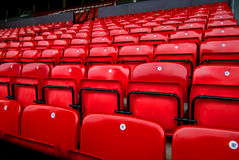 Audience chairs red. Empty arena for invitation and about events Stock Image