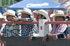 Audience in charros Royalty Free Stock Photo