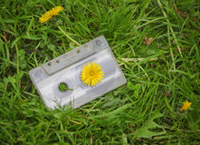 Audio cassette in the grass Royalty Free Stock Images