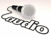 Audio intervista Mike Mic Word del suono del cavo del microfono Immagini Stock