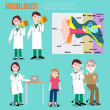 Audiologist , audiology , anatomy of ear vector infographic Stock Image