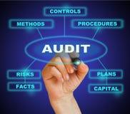 audit ilustração royalty free