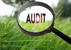 audit photos libres de droits
