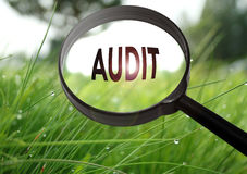 Audit. Magnifying glass with the word audit on grass background. Selective focus royalty free stock photos