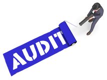 Audit Paint Shows Financial Auditing 3d Rendering vector illustration