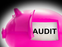 Audit Piggy Bank Message Means Inspection And Validation Stock Photos
