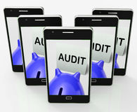 Audit Piggy Bank Shows Inspect Analyze And Verify Royalty Free Stock Photo