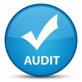 Audit (validate icon) special cyan blue round button Royalty Free Stock Photos