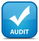 Audit (validate icon) special cyan blue square button Stock Image