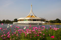 Auditorium on lake side. And cosmos and in botanical garden, Bangkok, Thailand stock image