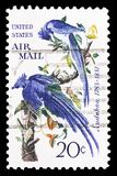 Audubon - Black-throated Magpie-jay (Calocitta colliei), Airmail 1952-1967 serie, circa 1967 royalty free illustration