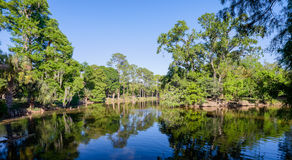 Audubon Park Stock Photography