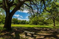 Audubon Park Stock Images