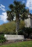 Audubon parkerar i New Orleans royaltyfria foton