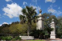 Audubon parkerar New Orleans fotografering för bildbyråer