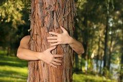 Außer den Bäumen Lizenzfreie Stockfotografie