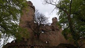 Auerbacher Schloss Immagini Stock