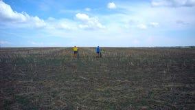Auf dem Feld nach der geernteten Ernte gibt es zwei Leute mit Fahrrädern stock video