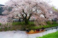 Auf dem Fluss unter Kirschblüte lizenzfreies stockfoto