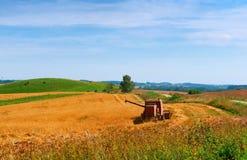 Auf dem Gebiet ernten, Bauernhofarbeit, Traktor, der auf dem Gebiet arbeitet Lizenzfreies Stockbild