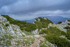 Auf dem Kamm des Berges Stockfoto
