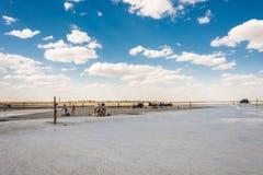 Auf dem salzigen See Baskunchak, am 12. Juli 2015 Lizenzfreie Stockbilder