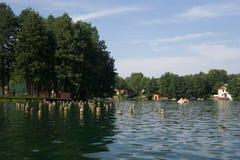 Auf dem See im Sommer stockfotografie