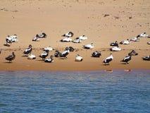 Auf dem Strand von Newburgh stockfoto