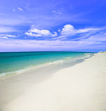Auf dem tropischen Strand lizenzfreies stockfoto
