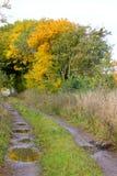 Auf dem Weg zum Herbst Stockbilder