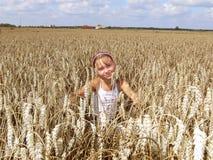 Auf dem Weizengebiet Lizenzfreies Stockbild