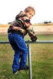 Auf dem Zaun lizenzfreies stockfoto