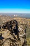 Auf den Berg Stockfoto