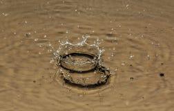 Auf der Oberfläche des Wassers bildete eine große und kleine Krone von Stockbilder