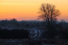 Auf der Spur des Sonnenaufgangs Stockbilder
