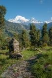 Auf der Spur nahe Chainabatthi, Nepal, das in Richtung Annapurna S blickt stockbild