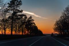 Auf der Straße mit der schönen Ansicht des Sonnenuntergangs umgebend durch Bäume lizenzfreie stockfotos