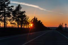 Auf der Stra?e mit der sch?nen Ansicht des Sonnenuntergangs umgebend durch B?ume stockfotos