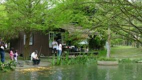 Auf der Taiwan-Linie 9 Hualien County Feiyu Kiefern-Park stock footage