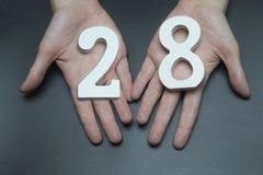 Auf der weiblichen Palmentabelle achtundzwanzig Lizenzfreie Stockbilder