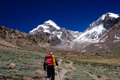 Trekking in Aconcagua Stockbild