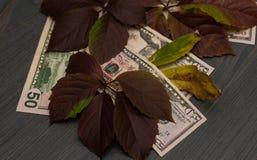 Auf einem hölzernen Hintergrund gibt es Dollar und Herbstlaubdämmerung lizenzfreie stockfotografie