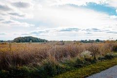 Auf einem Naturweg durch einen Park in Ohio Lizenzfreie Stockfotografie