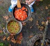 Auf einem Picknick kochen - Zwiebel, Pfeffer in einem Topf, Tomaten in der Wanne Stockbild