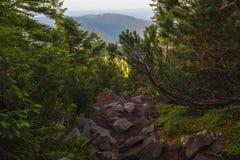 Auf einem Sommer die Identifikation vom Berg glättend Stockfoto
