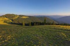 Auf einem sonnigen Sommertag, auf der Ansicht von der Hochebene zum Wald und auf den Bergen Blauer Himmel, viele grünes Gras und  Stockfotografie